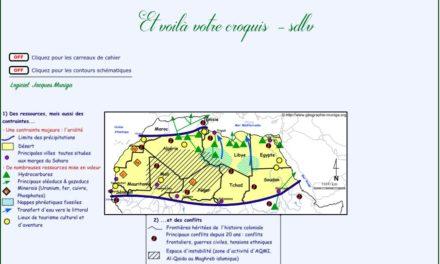 Image illustrant l'article Sahara de Clio Lycee