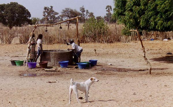 L'eau, ressource essentielle