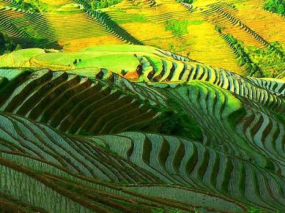 L'agriculture des espaces ruraux intertropicaux