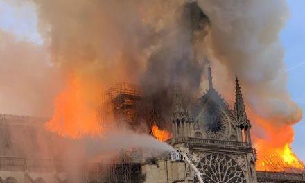 Image illustrant l'article un-violent-incendie-a-l-origine-encore-inconnue-ravage-la-cathedrale-notre-dame-de-paris-le-15-avril-2019_6171176 de Clio Lycee