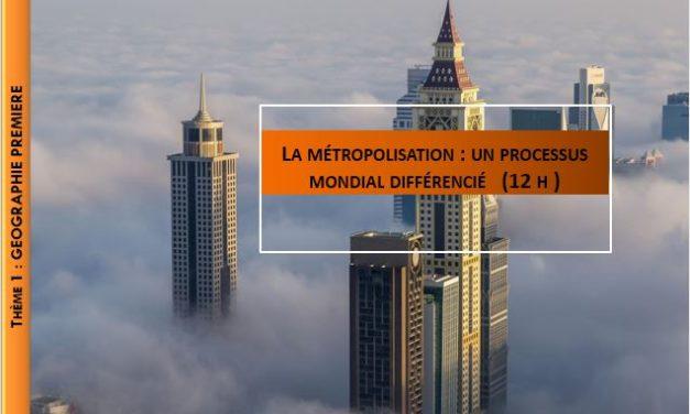 Les villes à l'échelle mondiale : le poids croissant des métropoles – Des métropoles inégales et en mutation