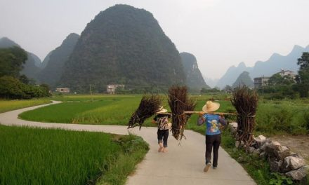 Image illustrant l'article chinbe_rural de Clio Lycee