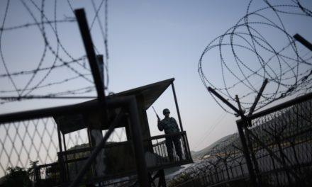 Image illustrant l'article la-zone-demilitarisee-entre-les-deux-corees-illustration de Clio Lycee