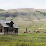 Les espaces ruraux canadiens, une multifonctionnalité marquée