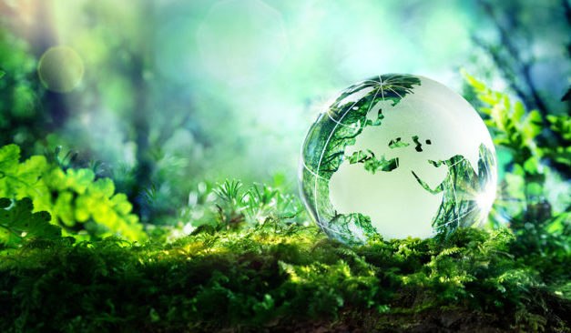 Introduction : qu'est ce que l'environnement ?