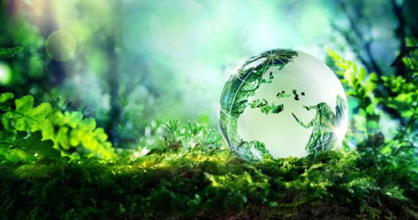 Les États-Unis et la question environnementale, tensions et contrastes