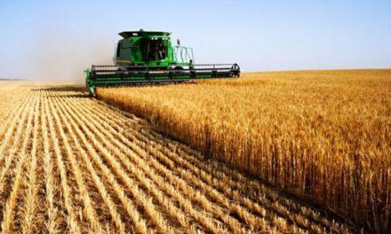Image illustrant l'article agriculture de Clio Lycee