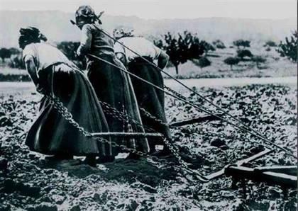 Les civils, acteurs et victimes de la Première Guerre mondiale