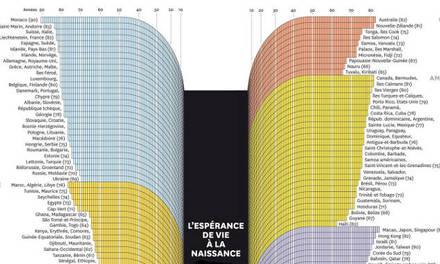 Espérance de vie à la naissance Infographie